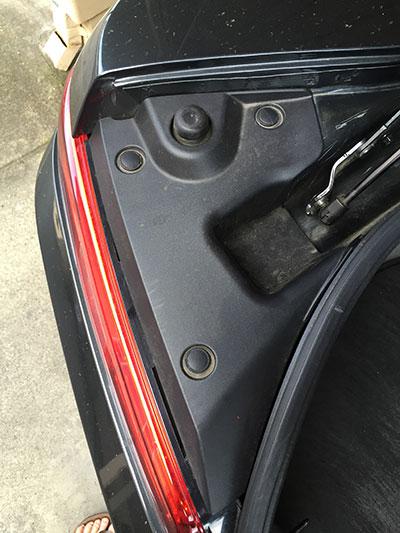 trunk6